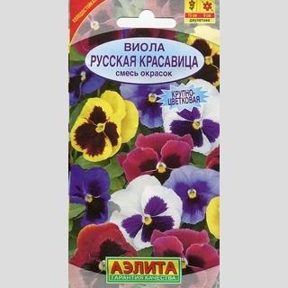 виола русская фото