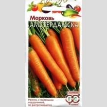Морковь Амстердамска раннеспелый