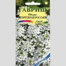 Иберис Жемчужная россыпь зонтичный