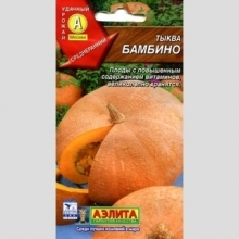 Тыква Бамбино среднеранний