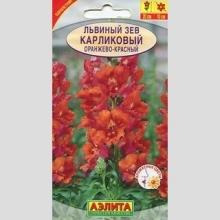Львиный зев Карликовый , оранжево-красный  10шт/уп