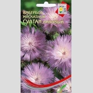 Амбербоа мускатный Султан, лиловый 40шт/уп-дом семян