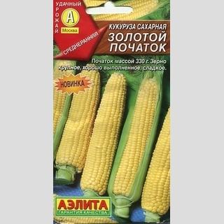 Кукуруза Золотой початок-аэлита