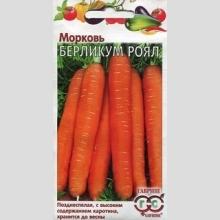 Морковь Берликум Роял, позднеспелый сорт