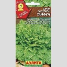 Салат листовой Тайфун среднеспелый