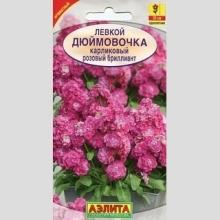 Левкой карликовый Дюймовочка розовый бриллиант