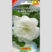 Бегония крупноцветковая Камелия белая 10 шт/уп