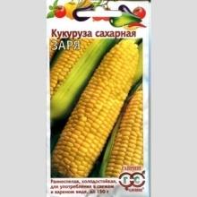 Кукуруза Заря