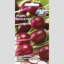 Редис Мулатка