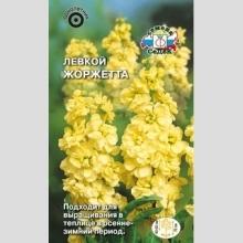 Левкой (маттиола седая) Жоржетта (желтый)