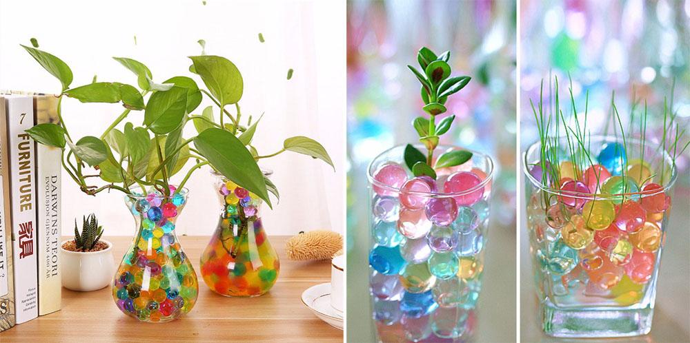 Круглосуточно воронеж, цветы в гидрогеле купить спб